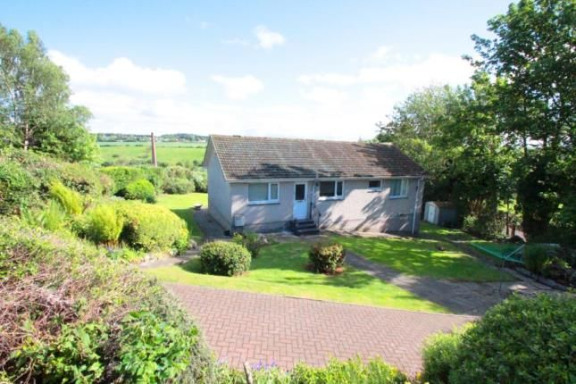 Thumbnail Bungalow for sale in Westgate, Leslie, Glenrothes, Fife