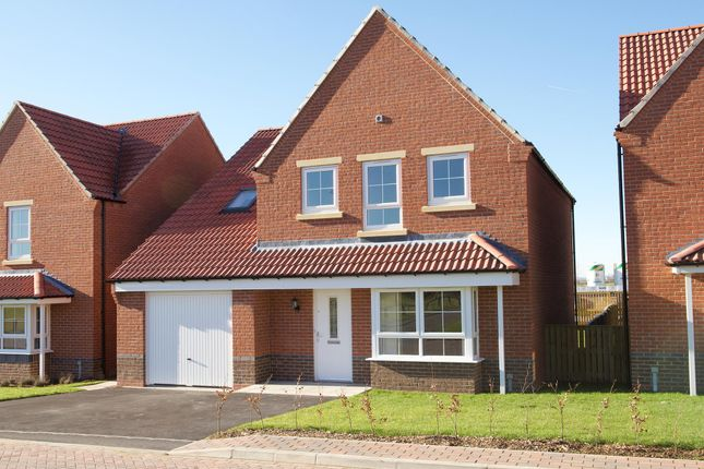 "Thumbnail Detached house for sale in ""Harrogate"" at Ripon Road, Kirby Hill, Boroughbridge, York"