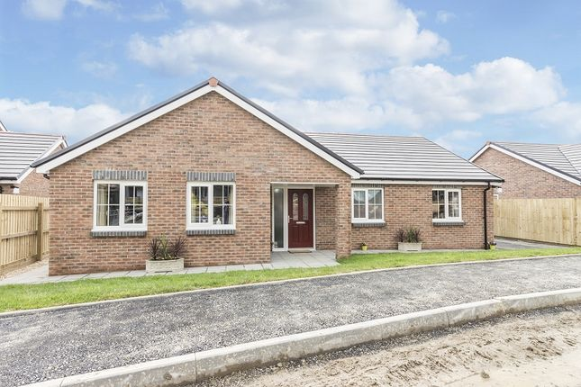 Thumbnail Detached bungalow for sale in Plot 13 Maes Y Llewod, Bancyfelin, Carmarthen, Carmarthenshire