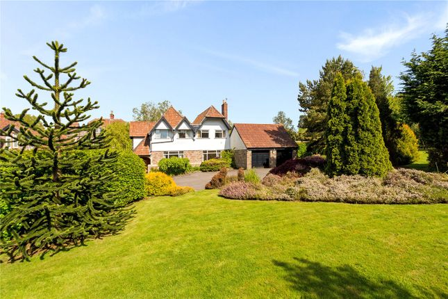 Thumbnail Detached house for sale in Ox House Lane, Failand, Bristol