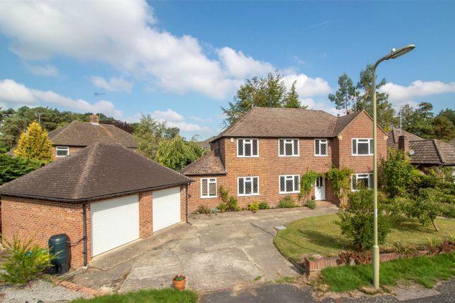 Thumbnail Detached house for sale in Longdown, Church Crookham, Fleet