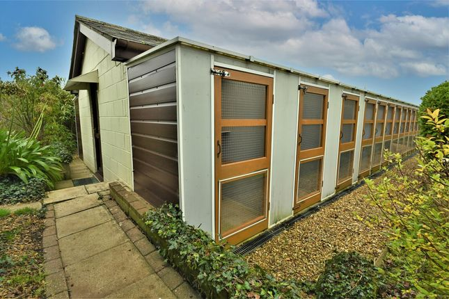 Thumbnail Commercial property for sale in Kennels, Cattery & Equestrian Businesses PO38, Sandford, Isle Of Wight