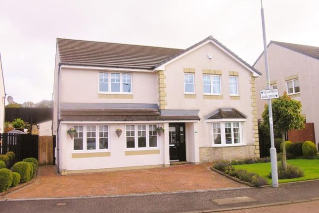 Thumbnail Detached house to rent in 14 Auctioneers Way, Lanark