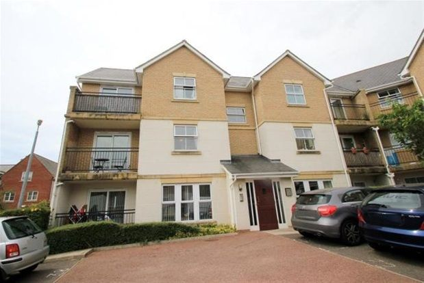 Thumbnail Property to rent in Wallace Road, Colchester
