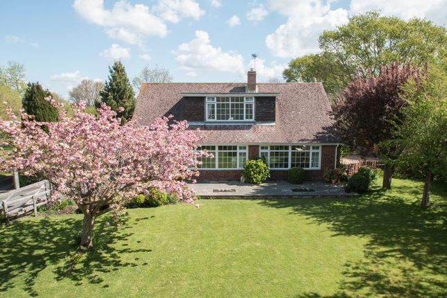 Thumbnail Detached house for sale in Church Lane, Birdham, Chichester