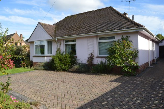 Thumbnail Detached bungalow for sale in Alexandria Road, Sidmouth