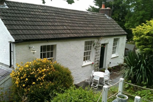 Thumbnail Detached house to rent in Dickslade, Mumbles, Swansea