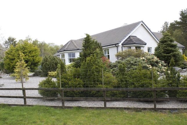 Thumbnail Bungalow for sale in Spinningdale, Ardgay, Highland
