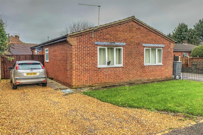 Thumbnail Detached bungalow to rent in Yardlea Close, Rowland's Castle