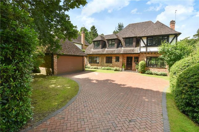 Thumbnail Detached house for sale in Ravenswood Avenue, Crowthorne, Berkshire