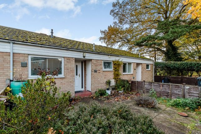 Thumbnail Bungalow for sale in Rought Avenue, Brandon, Suffolk