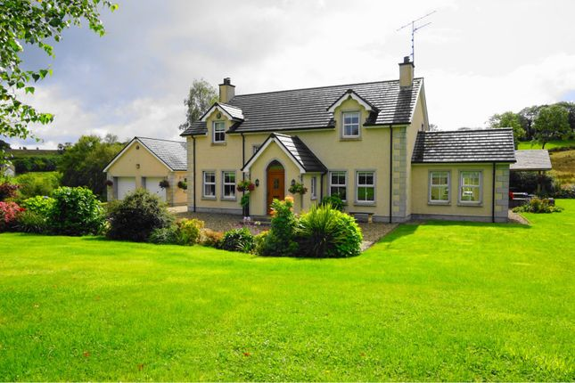 Thumbnail Detached house for sale in Relagh Road, Omagh