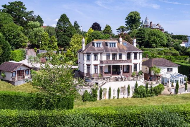 Thumbnail Detached house for sale in Meadow Road, Torquay, Devon