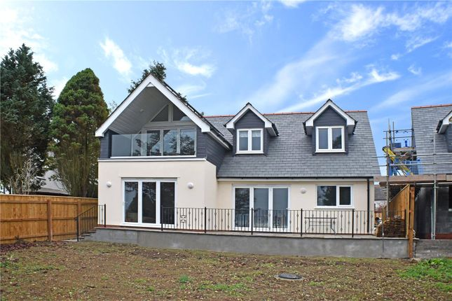 Thumbnail Detached house for sale in High Bullen, Torrington