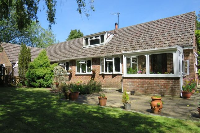 Thumbnail Detached bungalow for sale in Station Road, Semley, Shaftesbury