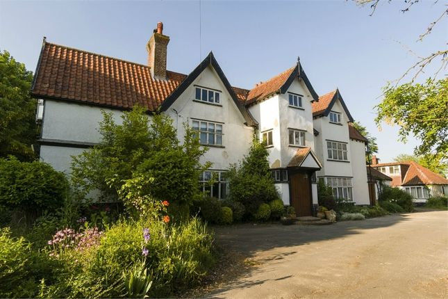 Thumbnail Detached house for sale in Rectory Lane, Bunwell, Norwich, Norfolk