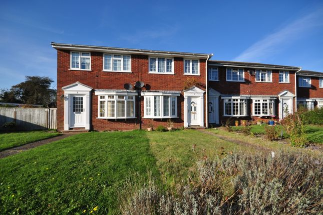 Thumbnail Terraced house to rent in Westwood Close, Cowes