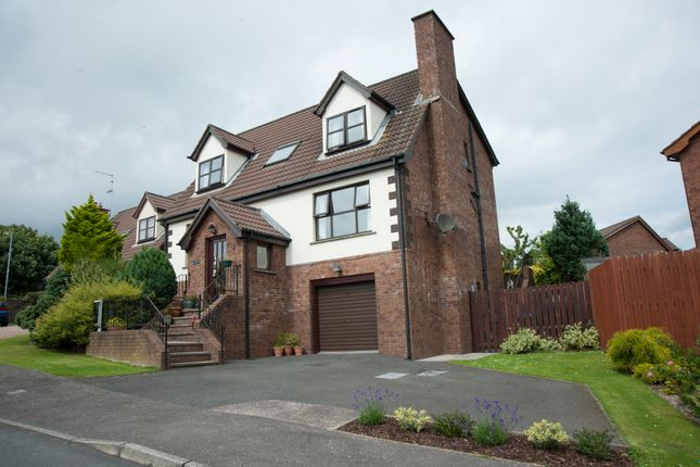 Thumbnail Detached house for sale in Carsons Road, Ballygowan, Newtownards
