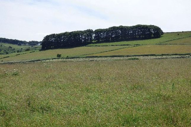 Thumbnail Farm for sale in Middleton Lane, Stoney Middleton, Hope Valley
