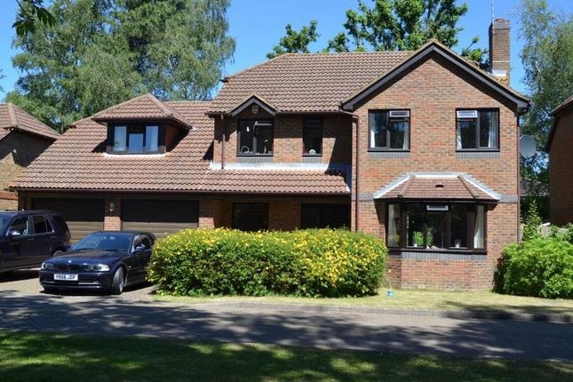 Thumbnail Detached house to rent in Martinsyde, Woking