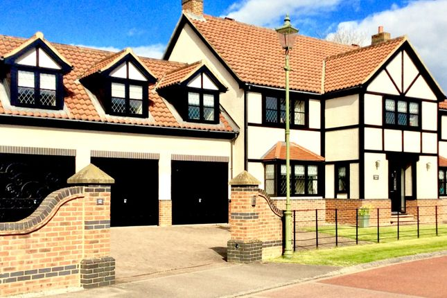 Thumbnail Detached house for sale in Gunners Vale, Wynyard, Billingham