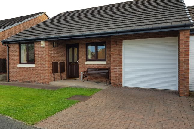 Thumbnail Bungalow for sale in Newlands Park, Workington
