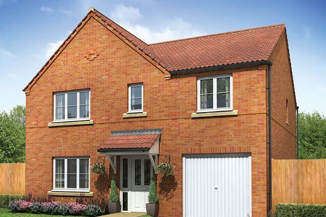 """Thumbnail Detached house for sale in """"The Oakhurst"""" at Staynor Link, Selby"""