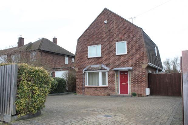 Thumbnail Detached house to rent in Queen Ediths Way, Cambridge, Cambridgeshire