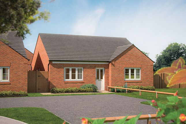 """Thumbnail Bungalow for sale in """"The Ebony """" at Marsh Lane, Nantwich"""