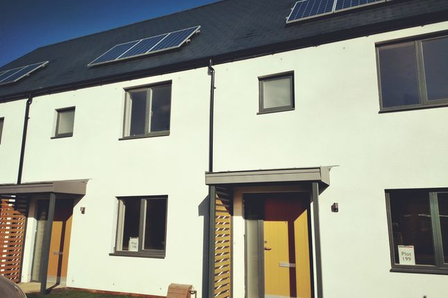 Thumbnail Terraced house for sale in Normandy Way, St Leonards