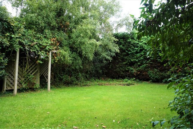 Side Garden of The Meadow, Copthorne RH10