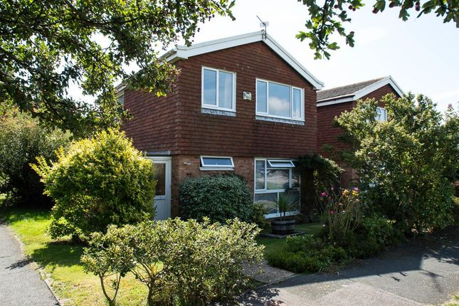 Thumbnail Detached house for sale in Rowan Avenue, Eastbourne