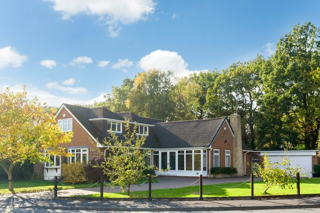 Thumbnail Detached bungalow for sale in Woodside Way, Solihull