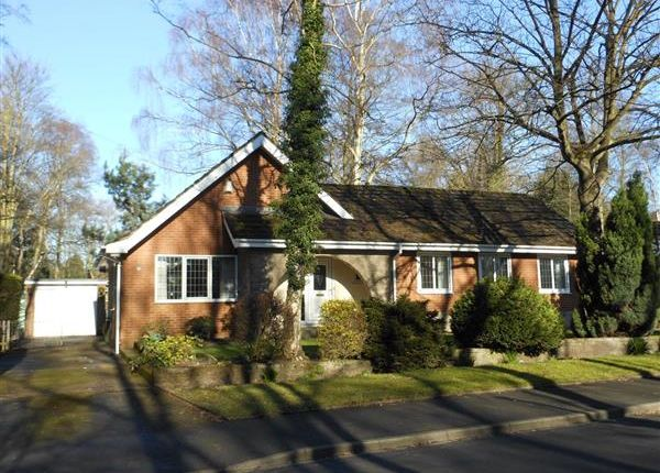 Thumbnail Detached bungalow to rent in Betula Way, Silica Lodge, Scunthorpe