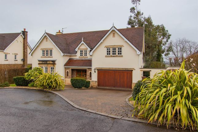 Thumbnail Detached house for sale in Cefn Mably Park, Michaelston-Y-Fedw, Cardiff