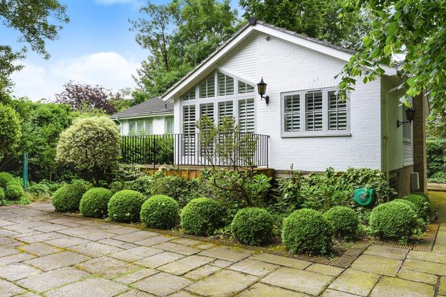 Thumbnail Detached bungalow to rent in Thames Street, Lower Sunbury