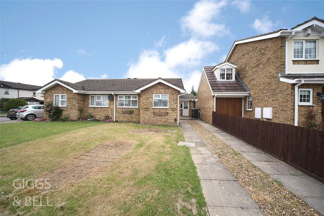 Thumbnail Bungalow for sale in Harlestone Close, Luton