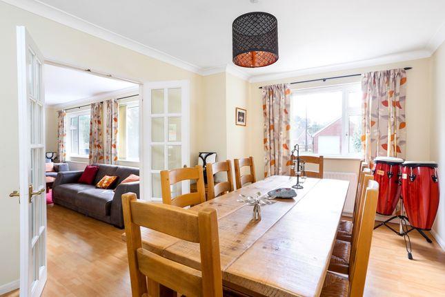 Thumbnail Bungalow to rent in Lymington Bottom Road, Medstead, Alton