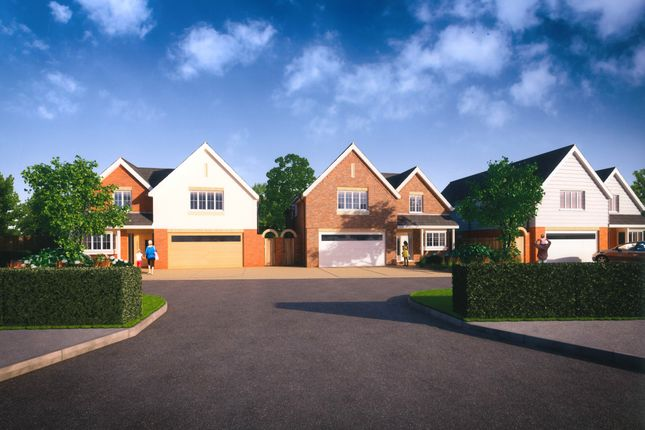 Thumbnail Detached house for sale in Thornley, Main Road, Nutbourne, West Sussex