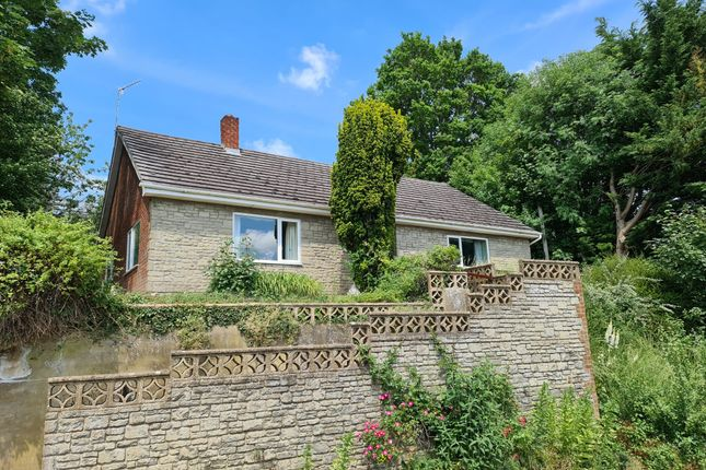 Thumbnail Detached bungalow for sale in Cuffs Lane, Tisbury, Salisbury