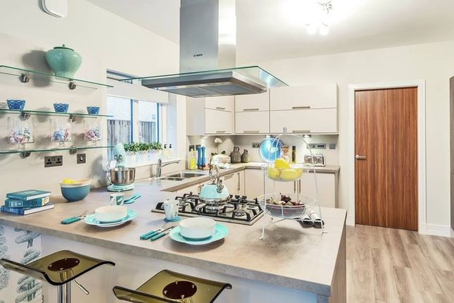 "Thumbnail Detached house for sale in ""The Melville"" at Jardine Avenue, Falkirk"