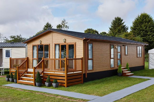 Thumbnail Detached house for sale in Aspire Muskoka, Plas Coch Holiday Home Park, Anglesey