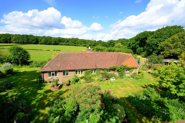 Thumbnail Detached bungalow for sale in Tickners Heath, Alfold, Cranleigh