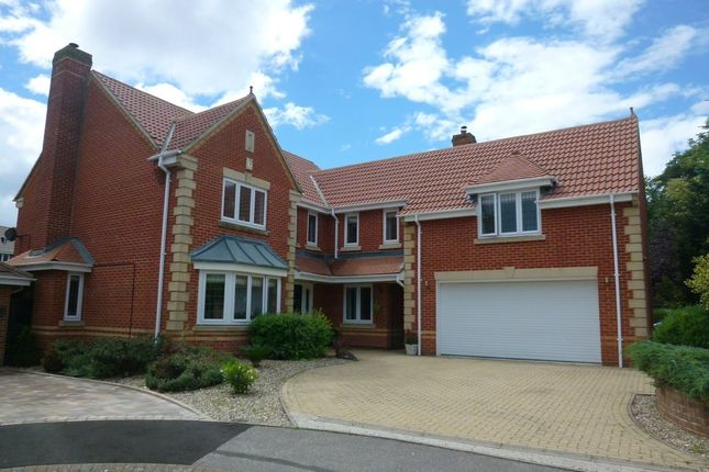 Thumbnail Detached house for sale in Crabtree Way, Old Basing, Basingstoke