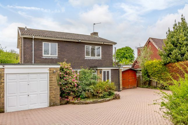 Thumbnail Detached house for sale in Western Road, Hailsham, East Sussex