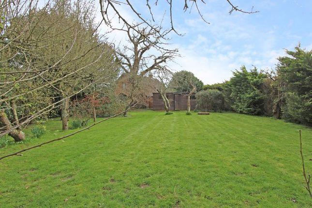 Photo 6 of Bramshaw, Lyndhurst SO43