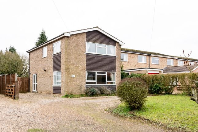 Thumbnail Detached house for sale in Besthorpe Road, Attleborough, Norfolk