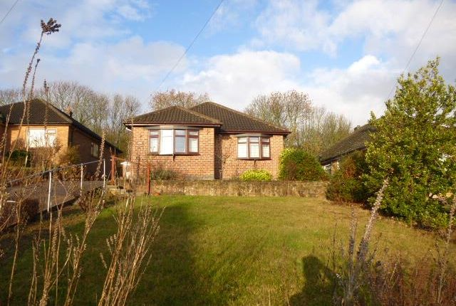 Thumbnail Bungalow to rent in Greenwood Avenue, Nottingham