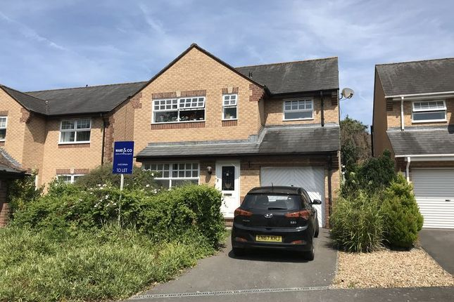 Thumbnail Property to rent in Weirfield Green, Taunton, Somerset