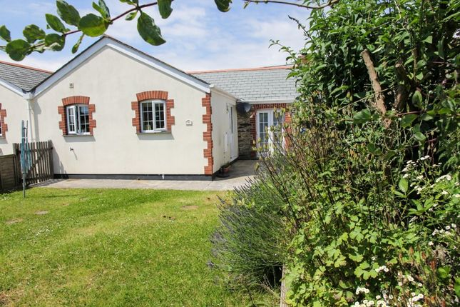 Thumbnail Bungalow to rent in Tregony Hill, Truro